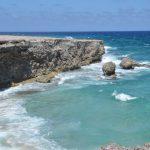 Why Aruba